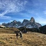 3 giorni in Trentino tra i Mercatini di Natale e scenari mozzafiato, con bimba di 3 anni.
