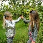 Vendemmia con i bambini Agriturismo La Guarda Muscoline (BS)